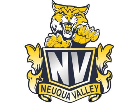 neuqua valley